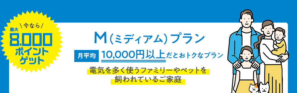 今なら最大8000ポイントゲット M(ミディアム)プラン 月平均10,000円以上だとおトクなプラン 電気を多く使うファミリーやペットを飼われているご家庭