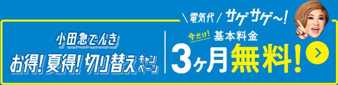 小田急でんき お得!夏得!切り替えキャンペーン 今だけ!基本料金3ヶ月無料!