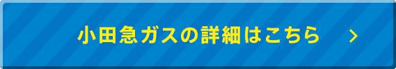 小田急ガスの詳細はコチラ