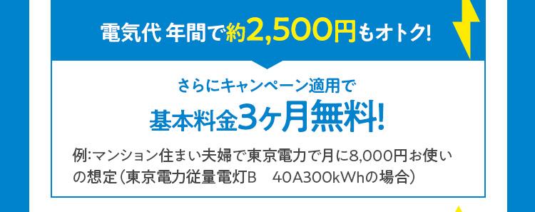 電気代 年間で約2,500円もオトク!さらにキャンペーン適用で基本料金3ヶ月無料!
