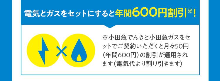 電気とガスをセットにすると年間600円割引※!